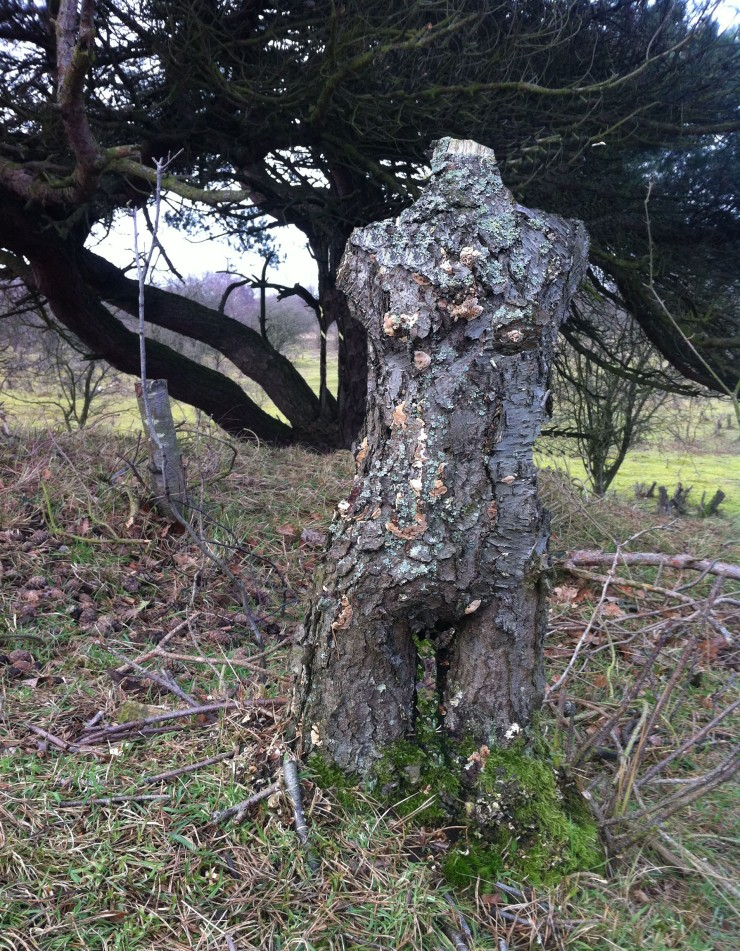 bos vrouw, tree woman, tree sculpture, tree body